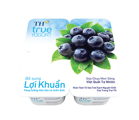 Natural Blueberry Probiotic Yogurt